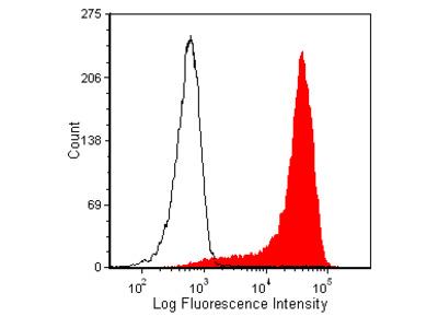 Anti-Mouse CD3e, Purified (Clone 145-2C11) (hamster IgG)