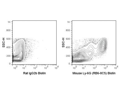 Biotin Anti-Mouse Ly-6G (Gr-1) (RB6-8C5)