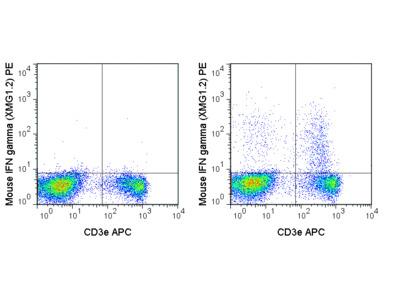 PE Anti-Mouse IFN gamma (XMG1.2)