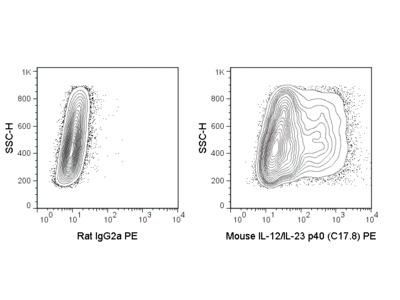 PE Anti-Mouse IL-12/IL-23 p40 (C17.8)