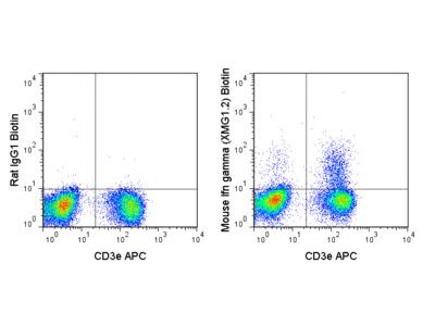 Biotin Anti-Mouse IFN gamma (XMG1.2)