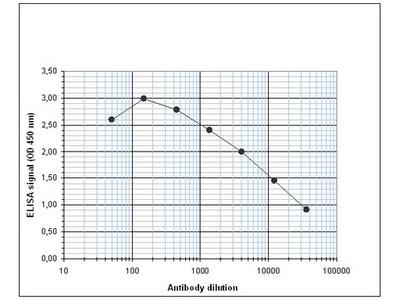 Rabbit Polyclonal CBX2 Antibody