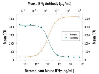 IFN-gamma Antibody