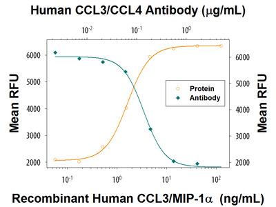 CCL3 /CCL4 Antibody
