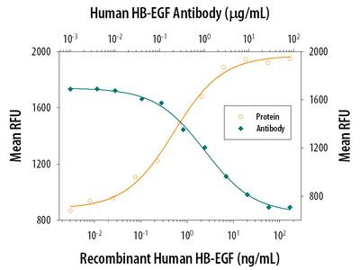 HB-EGF Antibody