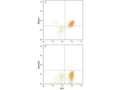 PLA2G7 /PAF-AH /Lp-PLA2 Antibody