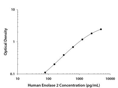 Enolase 2/Neuron-specific Enolase ELISA