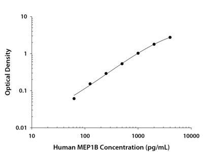Meprin beta Subunit /MEP1B ELISA