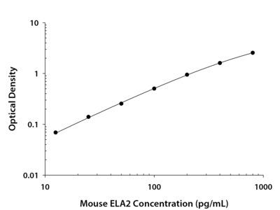 Neutrophil Elastase / ELA2 ELISA