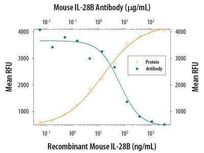 IL-28A / B (IFN-lambda 2 / 3) Antibody