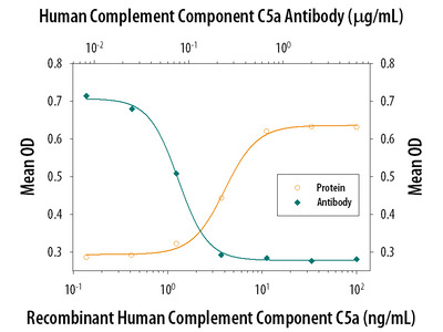 Complement Component C5 /C5a Antibody