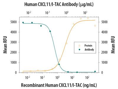 Human CXCL11 / I-TAC Antibody