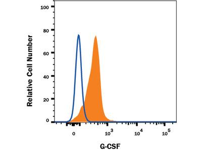 Mouse G-CSF Antibody