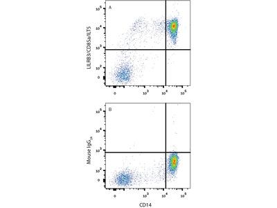 LILRB3 / CD85a / ILT5 Antibody