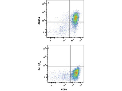 Mouse CXCR4 Antibody (MAB21651, R&D systems) Binds Baf3 Cells