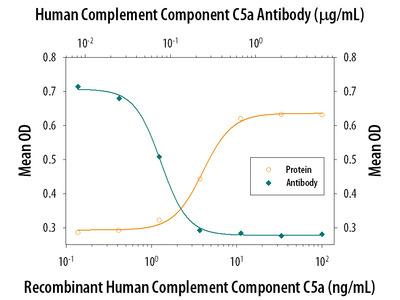 NrCAM Antibody