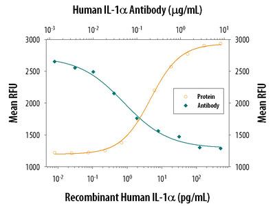 Kallikrein 6 /Neurosin Antibody