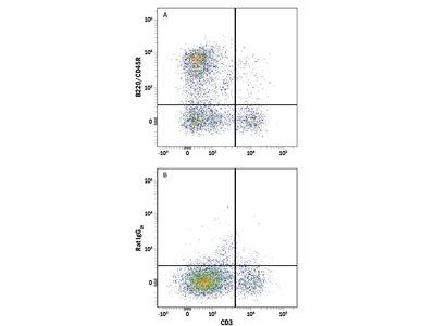 B220 / CD45R Alexa Fluor 700-conjugated Antibody