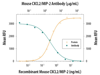 CXCL-2 for In Vivo Inhibition of Neutrophils in Wound