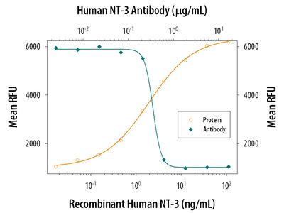 Human NT-3 Antibody