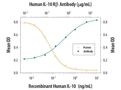 Human IL-10 R beta Antibody