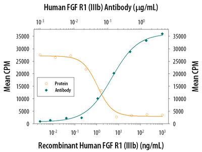 FGFR1 (IIIb) Antibody