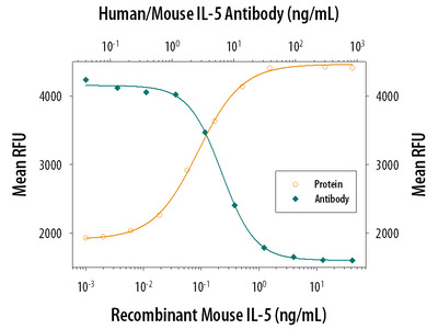 Human / Mouse IL-5 Antibody