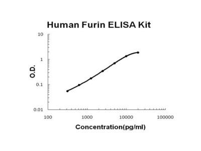 FURIN ELISA Kit