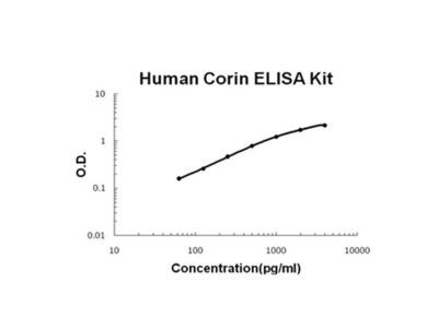 CORIN ELISA Kit