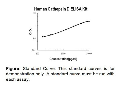 Cathepsin D ELISA Kit