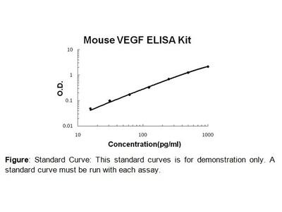 VEGF ELISA Kit