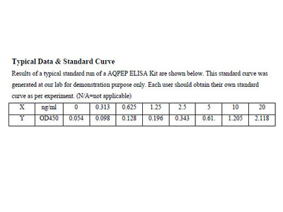 Human Aminopeptidase Q ELISA Kit
