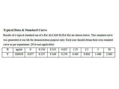 Rat CD166 antigen ELISA Kit