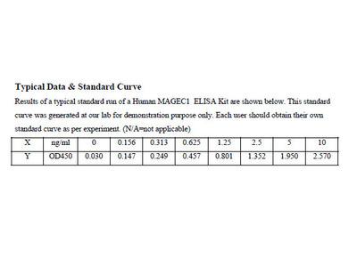 Human Melanoma-associated antigen C1 ELISA Kit