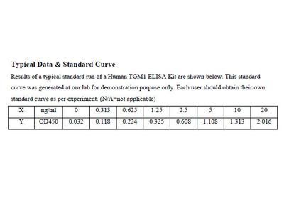 Human Transglutaminase 1, Keratinocyte ELISA Kit