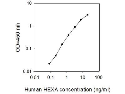 Human HEXA ELISA