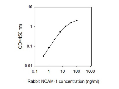 Rabbit NCAM-1/CD56 ELISA
