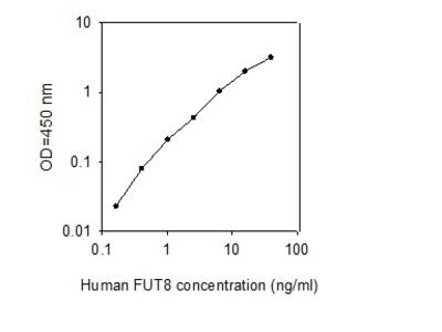 Human Fucosyltransferase 8 ELISA