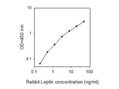 Rabbit Leptin ELISA