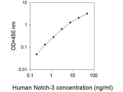 Human Notch-3 ELISA