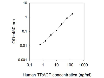 Human TRACP/PAP/ACP5 ELISA