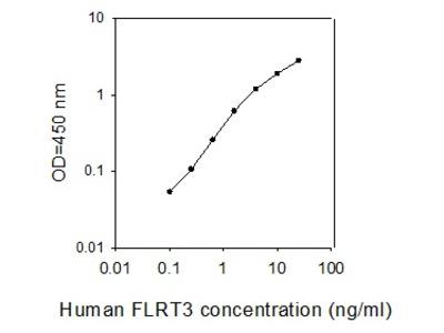 Human FLRT3 ELISA