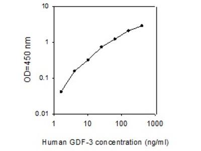 Human GDF-3 ELISA