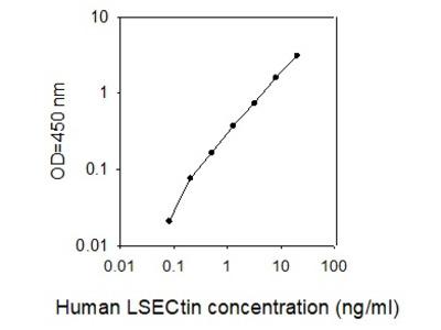 Human LSECtin/CLEC4G ELISA