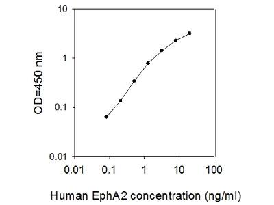 Human EphA2 ELISA