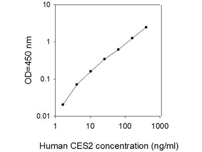 Human Carboxylesterase 2/CES2 ELISA