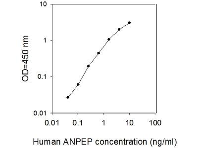 Human Aminopeptidase N/ANPEP ELISA