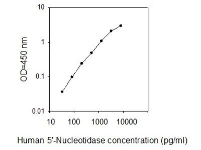 Human 5'-Nucleotidase/CD73 ELISA