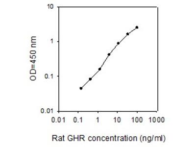Rat Growth Hormone R ELISA
