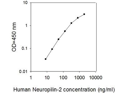 Human Neuropilin-2 ELISA